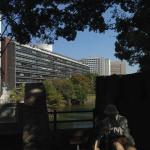 千代田区竹橋の几号水準点