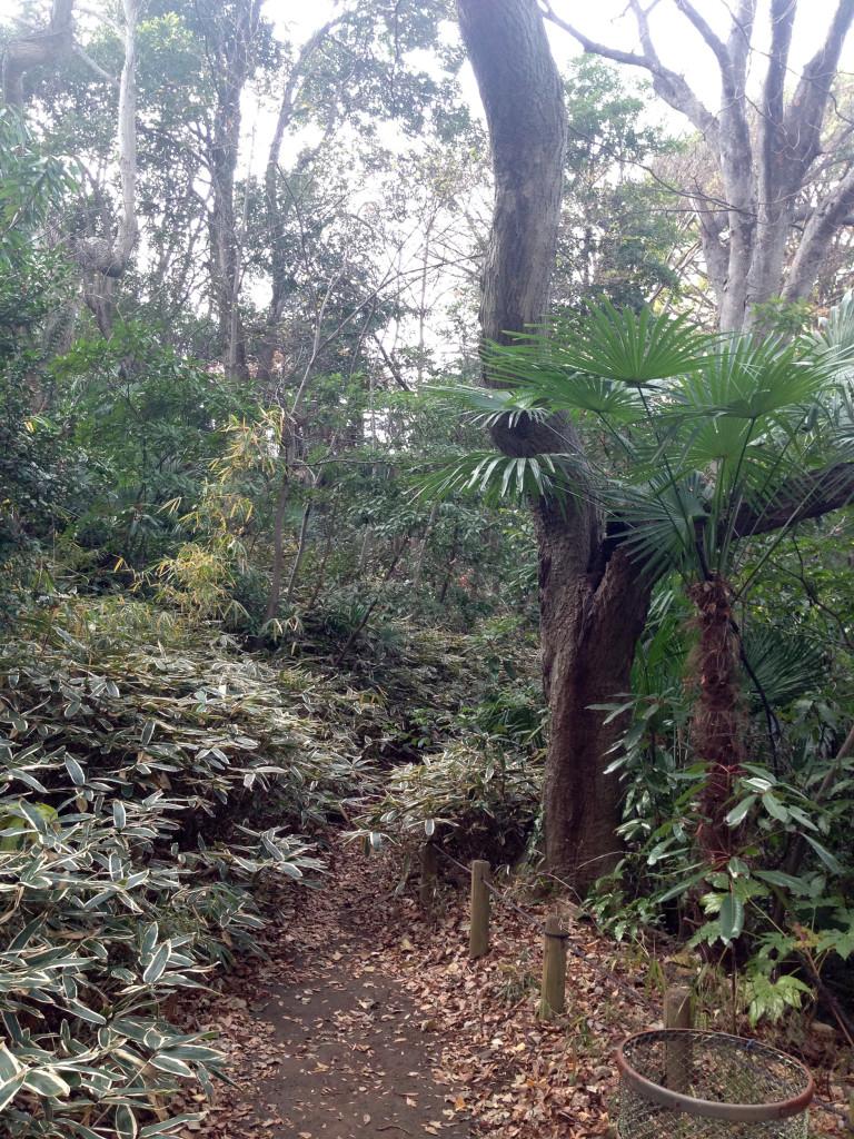 ジャングルのような占春園