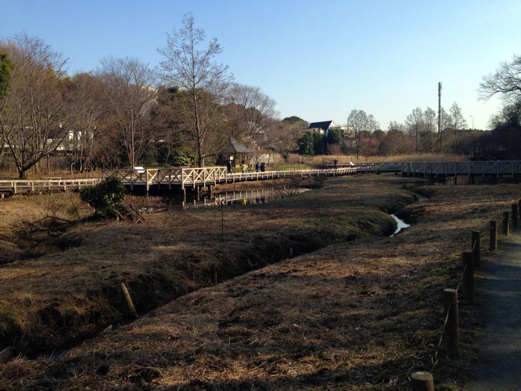 水生植物公園