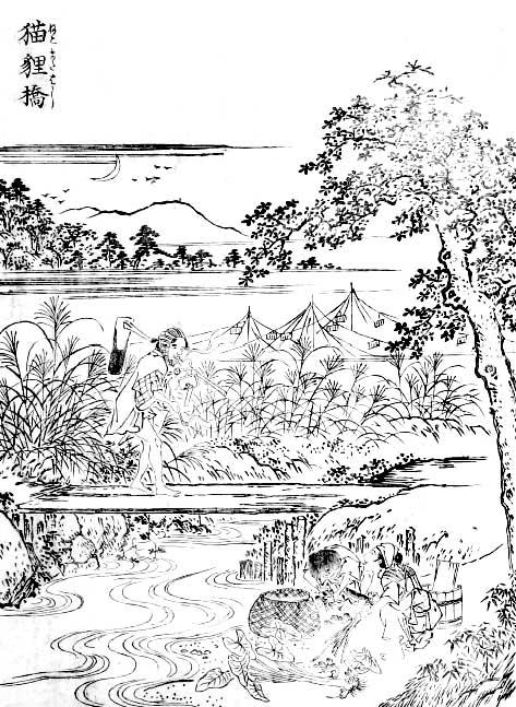 猫股橋(江戸名所図会)
