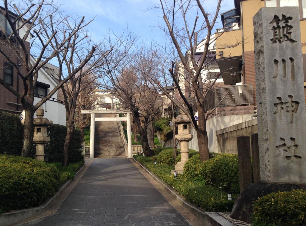 簸川神社の石段