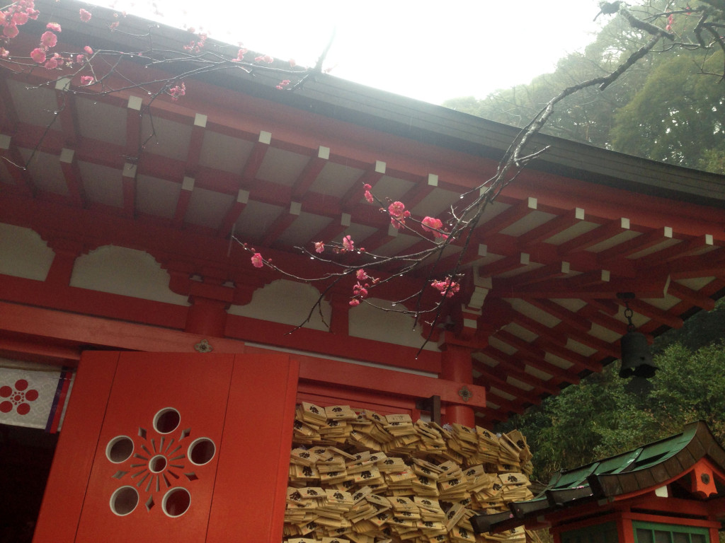 荏柄天神社の梅