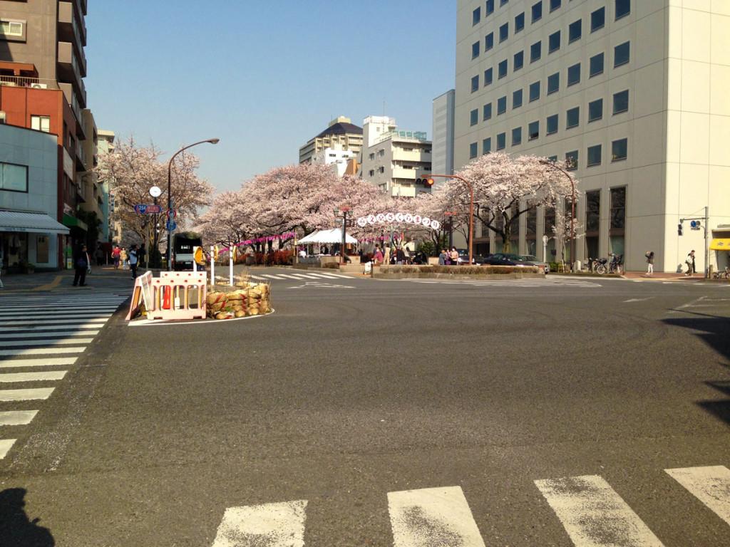春日通りと播磨坂