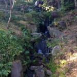 滝(須藤の滝)