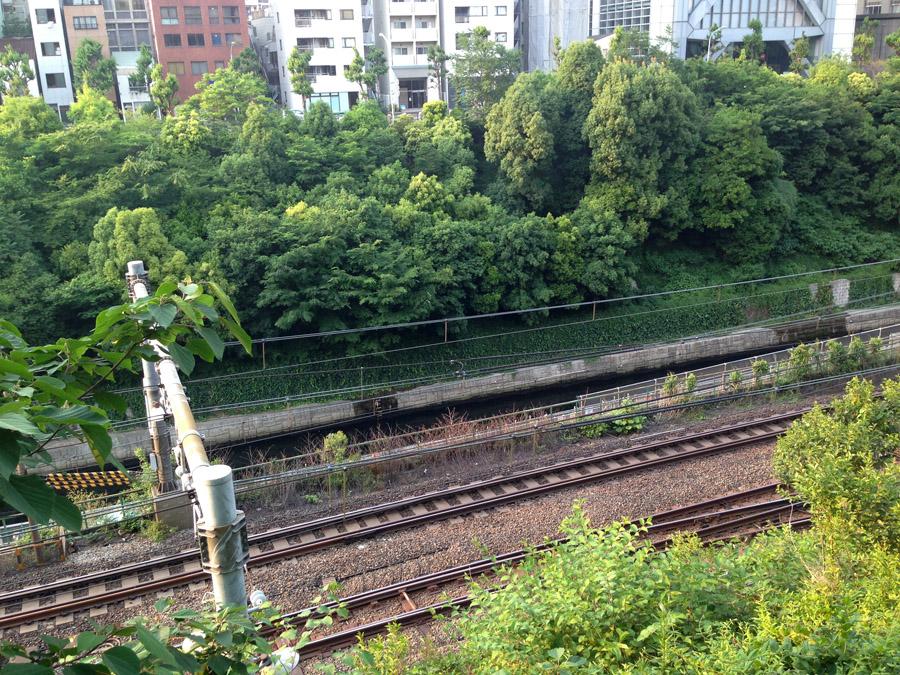 千代田区側から千代田区側からみた仙台堀