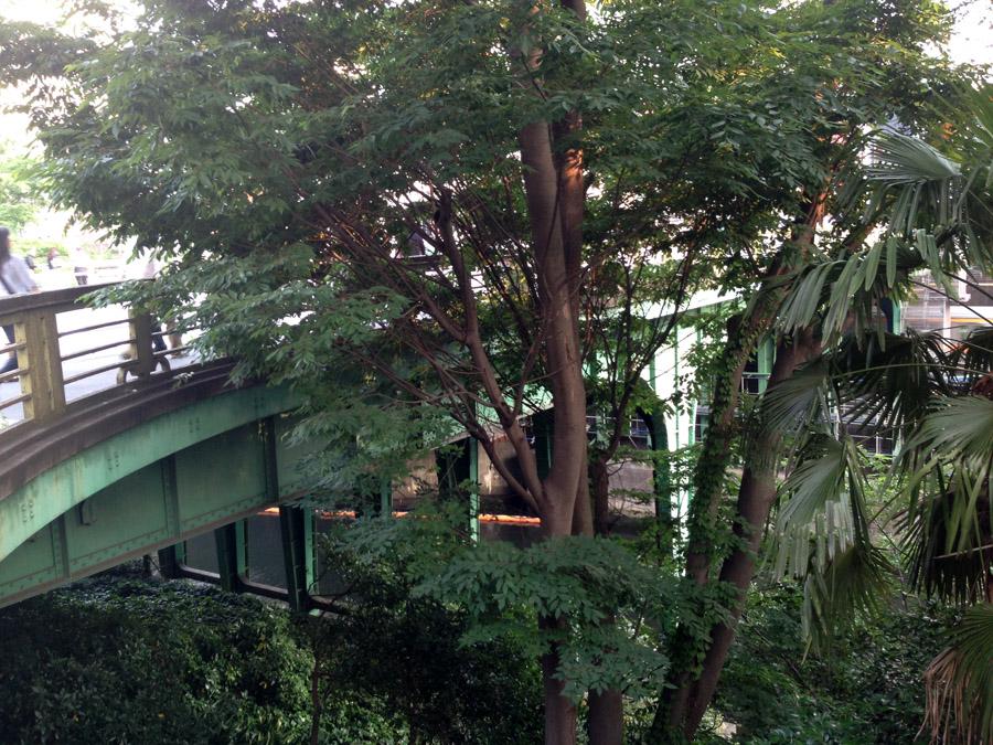 現在のお茶の水橋