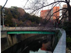 駒塚橋から椿山荘を望む