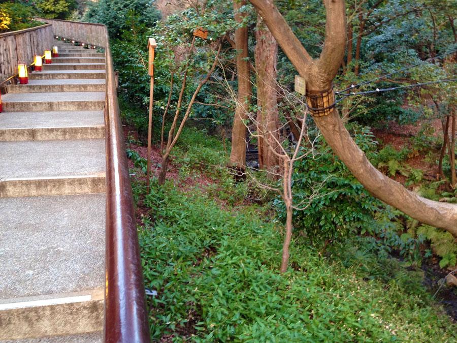 渓流沿いを往く坂道