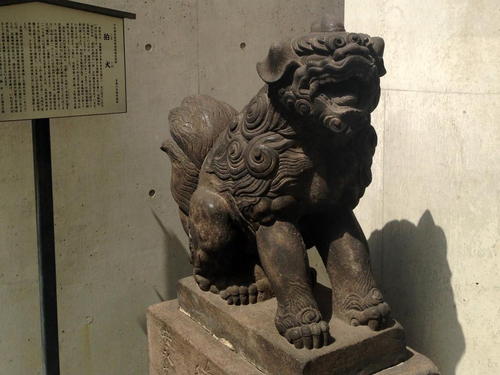筑土神社の狛犬