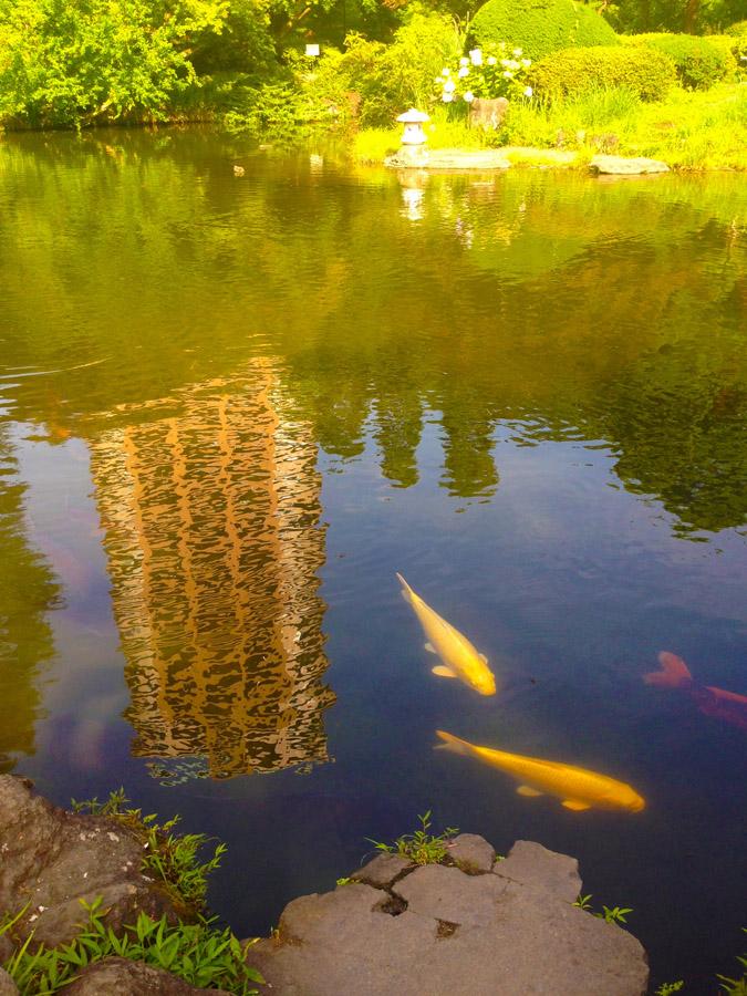 甘泉園の池