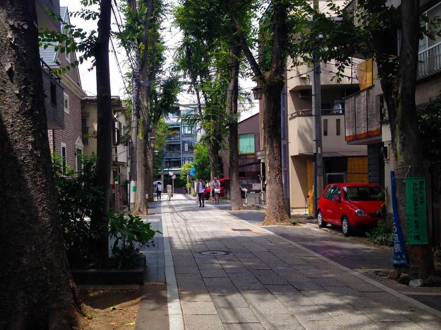 欅並木の参道