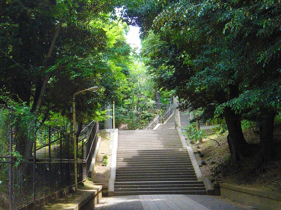 渋谷氷川神社参道