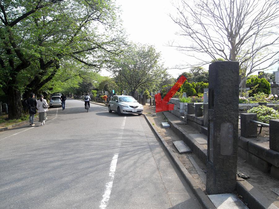 谷中霊園天王寺前の「さくら通り」の几号水準点