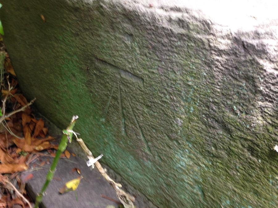 宝泉寺の几号水準点。緑を掻き分け撮影。