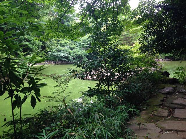 加賀藩邸、心字池(三四郎池)