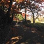 江戸城東御苑内松の廊下跡