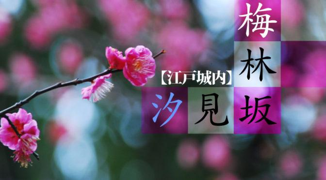 太田道灌の梅林坂と先祖が登った汐見坂