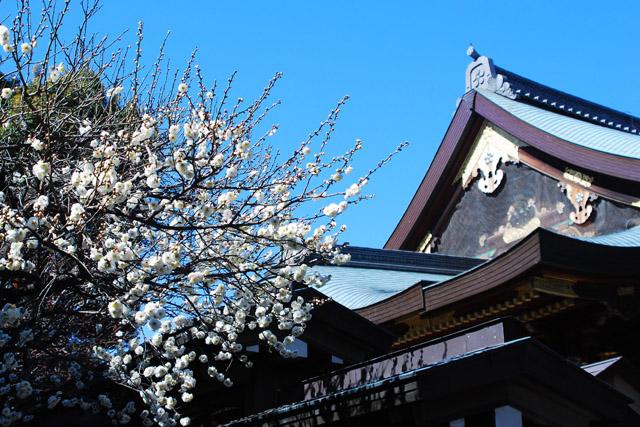 「湯島の白梅」が有名な湯島天神。