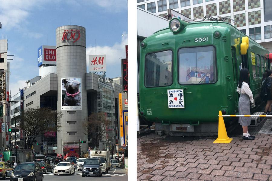 SHIBUYA109とハチ公広場の東急電鉄の5000系、通称「青ガエル」。