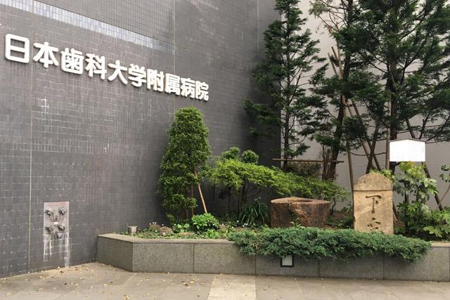 日本歯科大学附属病院前の武家屋敷の遺物。