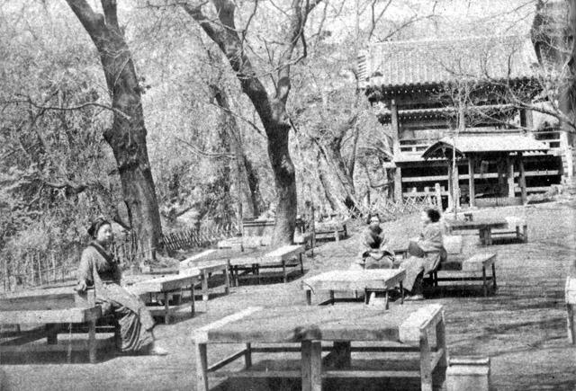 古写真:明治後期の上野清水観音堂境内。