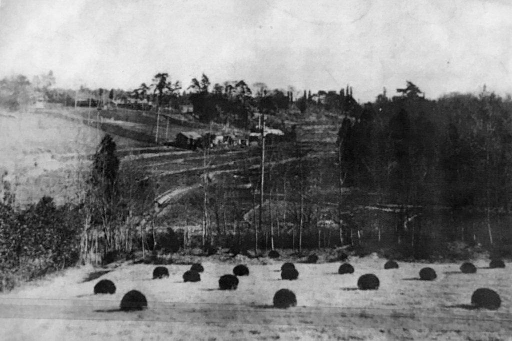 古写真:明治三十年代の河骨川周辺