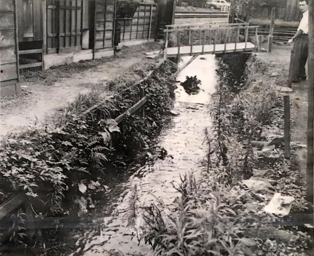 古写真:河骨川と線路
