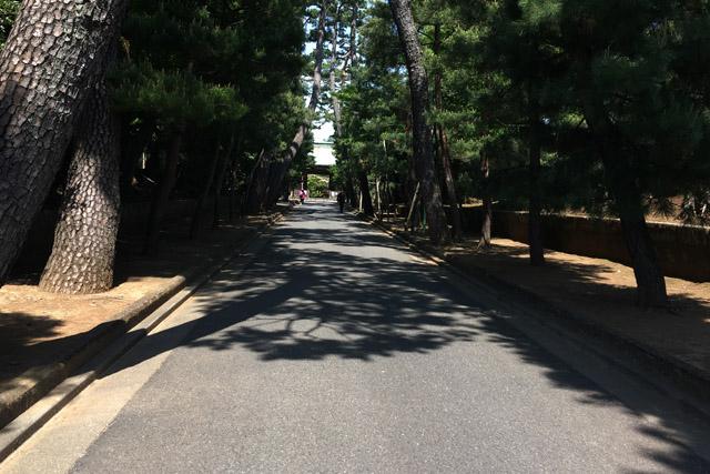 豪徳寺参道