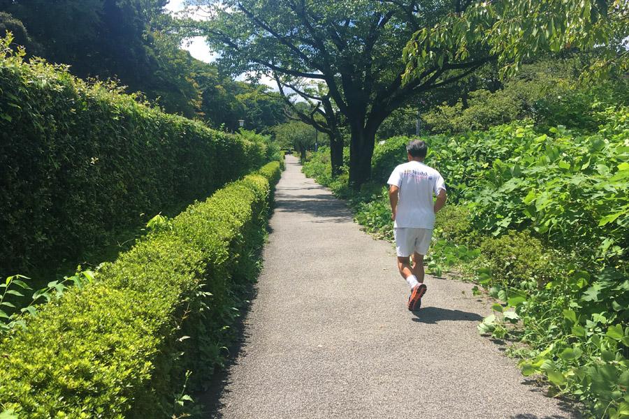皇居周回の細い道