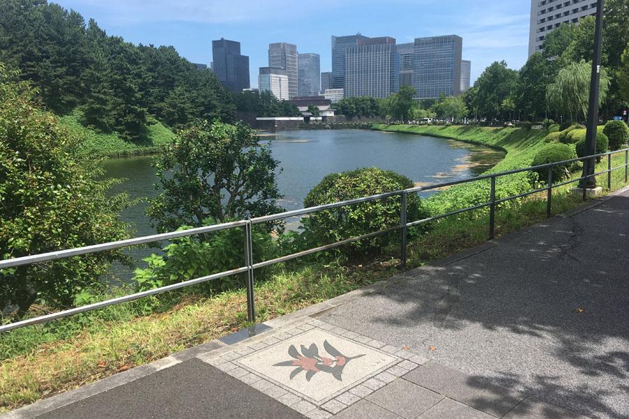 高知県「やまもも」地点から桜田門を望む。